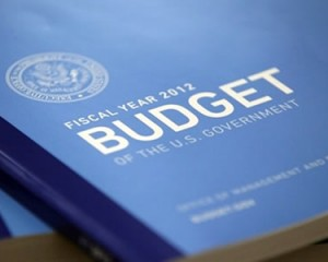 Investment Opportunities and The High Federal Budget Deficit