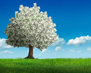 Preparing for a Secure Retirement: The 401(k) Plan Rollover